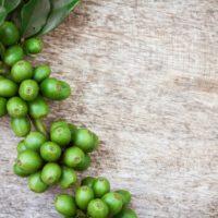 Zelená káva – Cena, účinky a diskusia