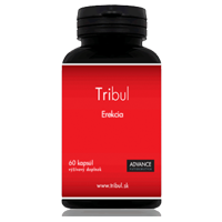 tribul erekcia tribulus advance
