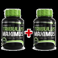 Tribulus Maximus (Biotech) – Recenzie a dávkovanie